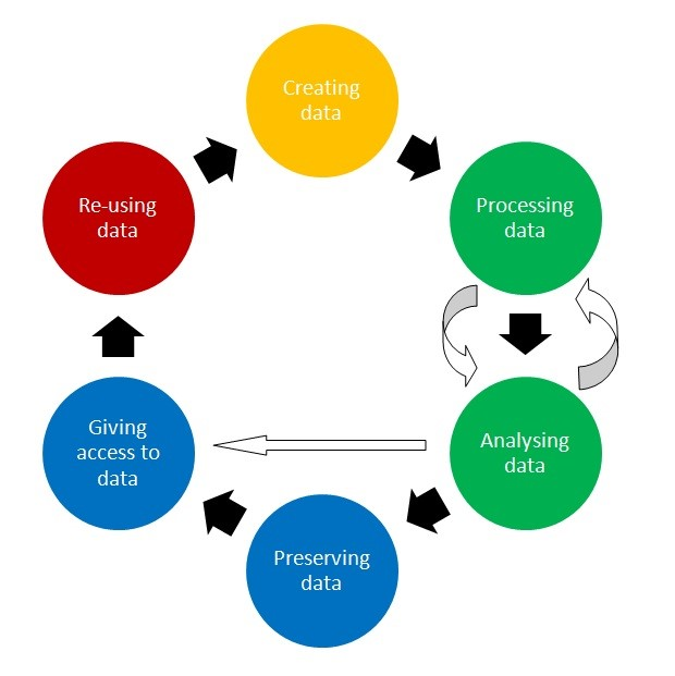 data life cycle graph